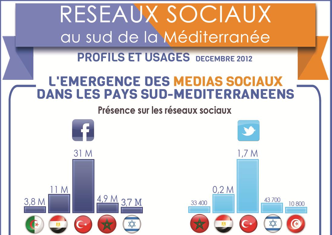 infographie arabe alaune